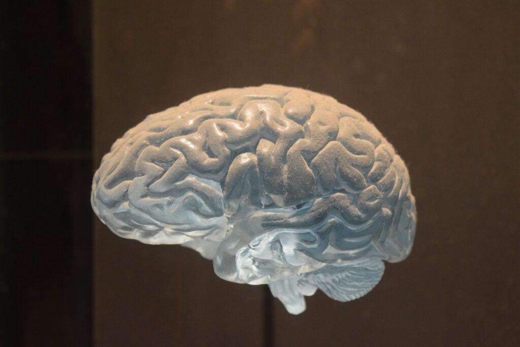 neurological-disorders