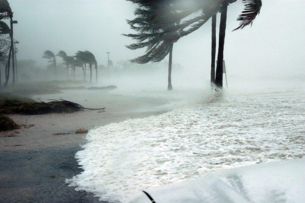 Hurricane Katrina man made disaster